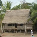 Typowa chata dzunglowa