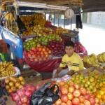 Swierze owoce