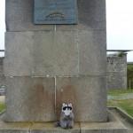 Szop pod Pomnikiem sw. Mateusza, Francja