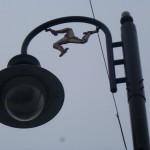 Symbol na latarni miejskiej, Douglas